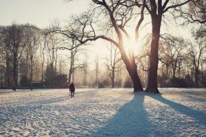 Winterspaziergang in Bremen