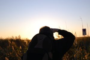 Ole macht ein Foto vom Sonnenuntergang